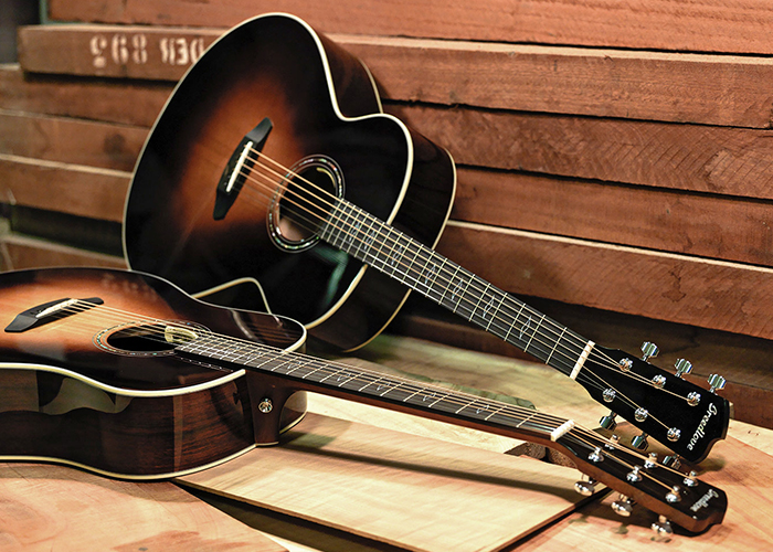Breedlove Guitars →